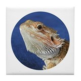 Cute Bearded dragons Tile Coaster