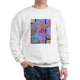Joyous Birth Sweatshirt