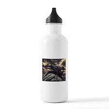 alex-dragon Water Bottle