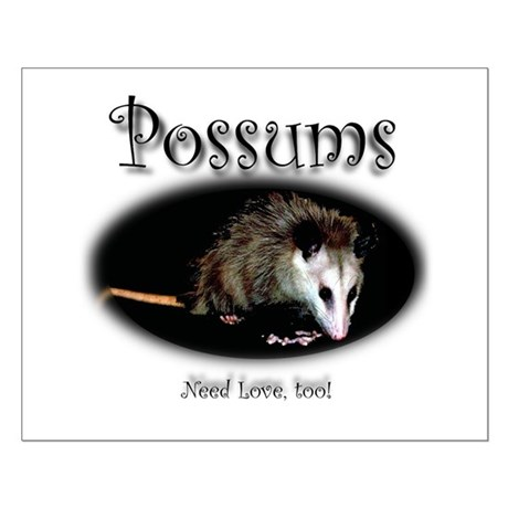 Possums Need Love Too Small Poster