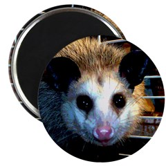 "The Opossum 2.25"" Magnet (100 pack)"