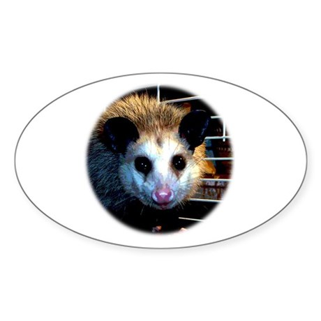 The Opossum Oval Sticker