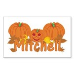 Halloween Pumpkin Mitchell Sticker (Rectangle)