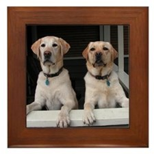 Aug Lab of the Month Framed Tile