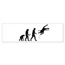 Pole Vaulter Evolution Sticker (Bumper 10 pk)
