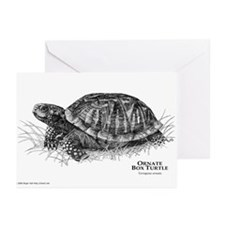 Ornate Box Turtle Greeting Cards (Pk of 10)