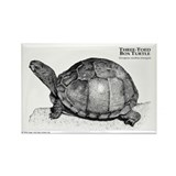 Three-Toed Box Turtle Rectangle Magnet