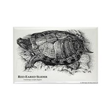Red-Eared Slider Rectangle Magnet