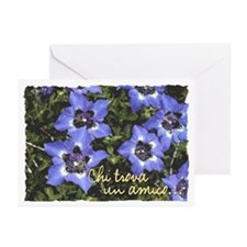 BellaVita Greeting Cards (Pk of 10)