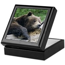 Grizzly Keepsake Box