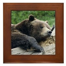 Grizzly Framed Tile