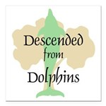 Descended from Dolphins Square Car Magnet 3