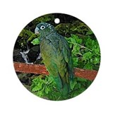 Pionus Art Ornament (Round)