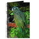Pionus Art Journal