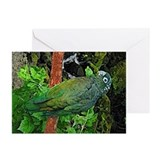 Pionus Art Greeting Cards (Pk of 10)
