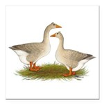 """Tufted Buff Geese Square Car Magnet 3"""" x 3&qu"""