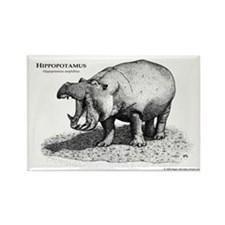 Hippopotamus Rectangle Magnet
