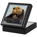 Alaskan Sea Otter Keepsake Box