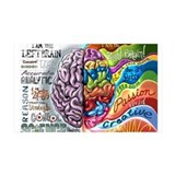 Left Brain Right Brain Cartoon Poster Wall Decal