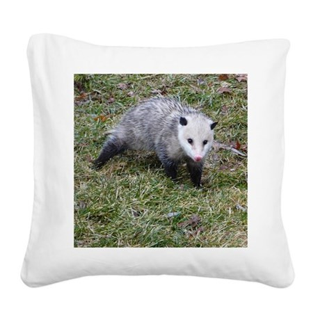 Opossum Square Canvas Pillow