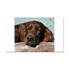 irish setter sq larger.png Rectangle Car Magnet