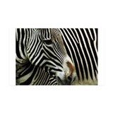 Black and White Zebra  Wandtattoo