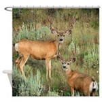 Mule deer velvet Shower Curtain