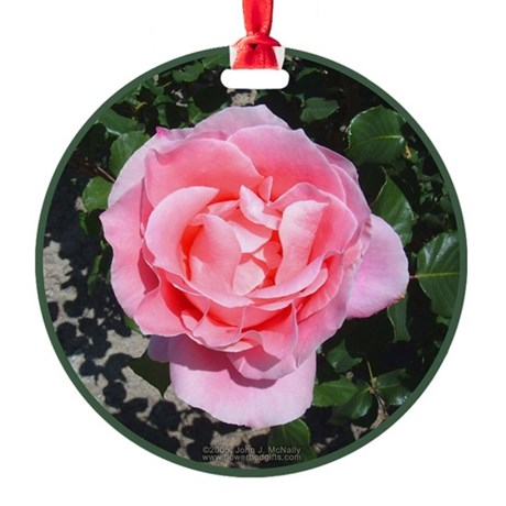 Pink Rose Round Ornament