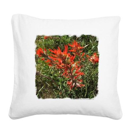 Indian Paintbrush Flower Square Canvas Pillow