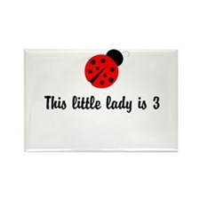 Third Birthday Ladybug Rectangle Magnet