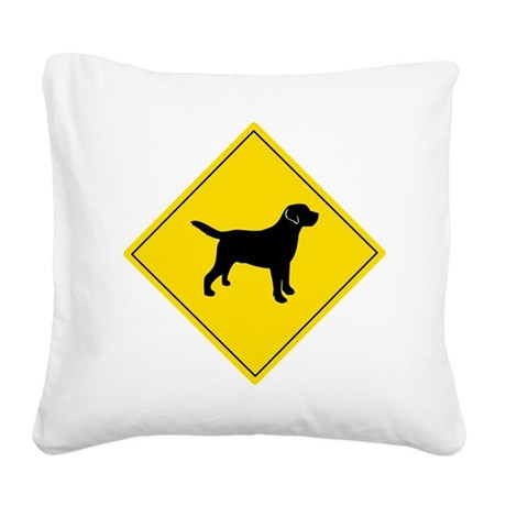 Boarding Lab Square Canvas Pillow