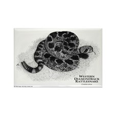 Western Diamondback Rattlesna Rectangle Magnet