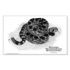 Western Diamondback Rattlesna Sticker (Rectangular