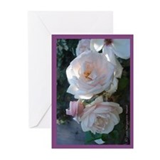 Perfect Roses Greeting Cards (Pk of 10)