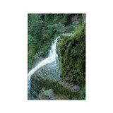 Funny Taughannock falls Rectangle Magnet (100 pack)