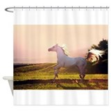 Arabian horse on sunset Shower Curtain