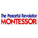 Peaceful Revolution Bumper Car Sticker
