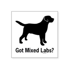 "Got Mixed Labs II Square Sticker 3"" x 3"""