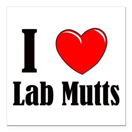 "I Love Mixed Labradors Square Car Magnet 3"" x 3"""