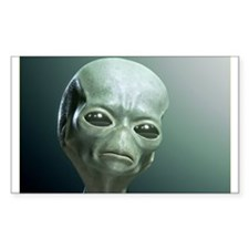 Secret UFO Videos Decal