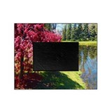 Japanese Maple Picture Frame