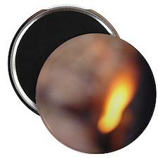 BURN, BABY, BURN III Magnet