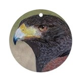 Harris' Hawk Ornament (Round)