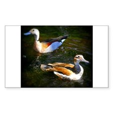 DUCKS ON THE POND Decal