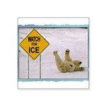 bearonice.png Square Sticker 3