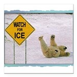 bearonice.png Square Car Magnet 3