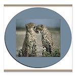 cheetah3.jpg Square Car Magnet 3