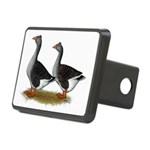 Tufted Toulouse Geese Rectangular Hitch Cover