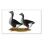 Tufted Toulouse Geese Sticker (Rectangle 10 pk)