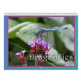 Dragonfly Home Accessories